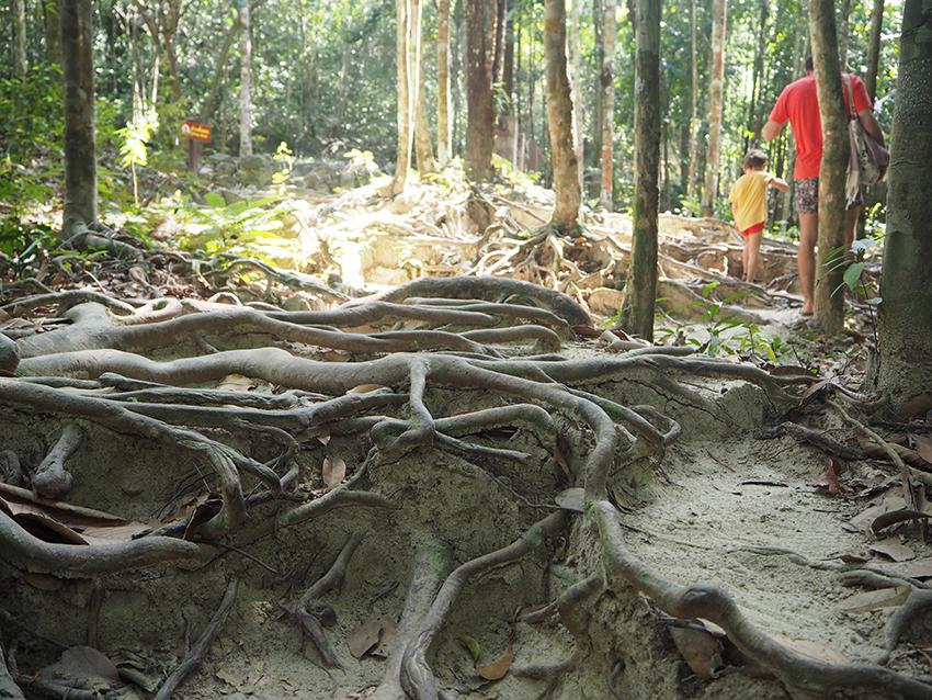guide_thailande1