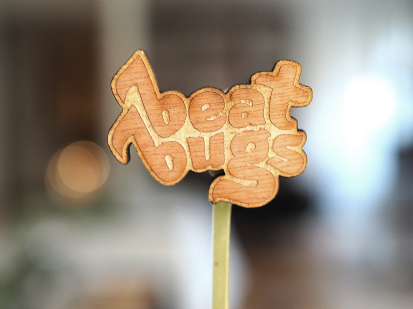 01_beat_bugs