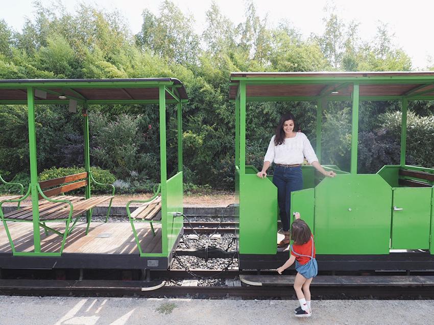 02_petit_train_touristique_tarn