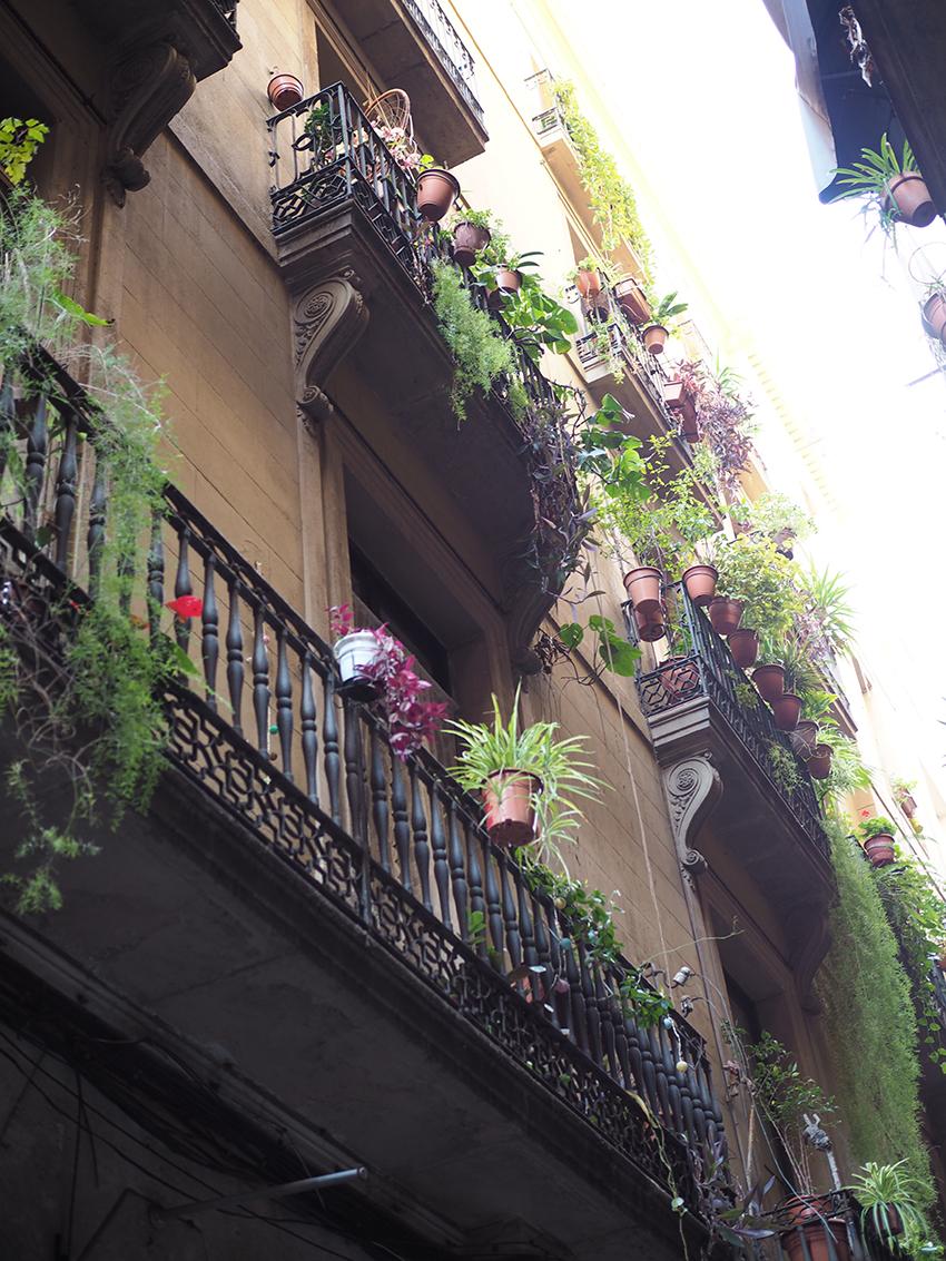 25barcelone_quartier_gothique_les_moustachoux